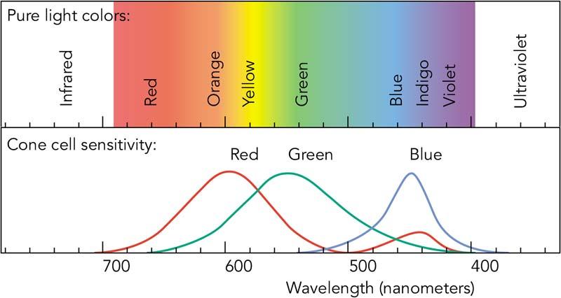 Kızılötesi ışık nedir?