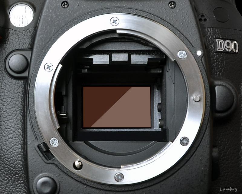 Kızılötesi fotoğrafçılık için fotoğraf makinesi seçimi